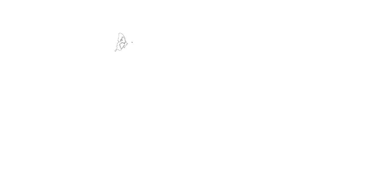 McNeill Schulranzen-Ergo Light Compact flex